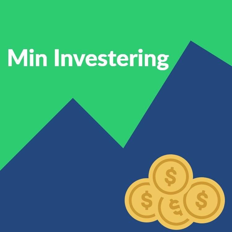 mininvestering.dk